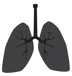 Lung icon on white background lung sign vector