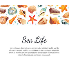 Sea life banner template with seashells and space vector