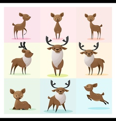Set of Deer family vector