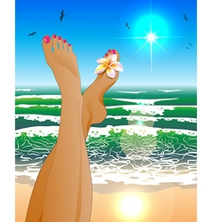 a Womans Legs Relaxing at the Beach vector image vector image