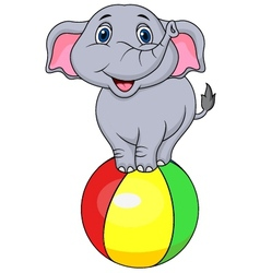 Cute elephant cartoon standing on a colorful ball vector image
