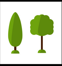 fir flat tree icon spruce tree icon vector image