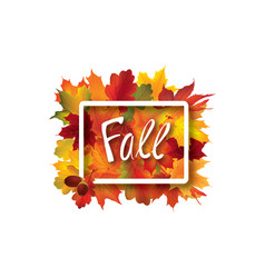 fall leaves sign autumn leaf frame nature vector image
