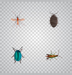 set of insect realistic symbols with mosquito bug vector image