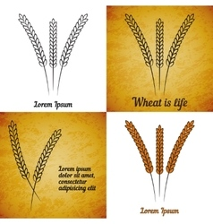 set of wheat ears on different layers vector image
