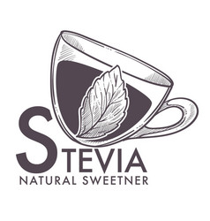 Stevia natural sweetener leaf put in drink cup vector