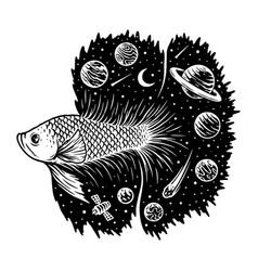 universe betta fish vector image