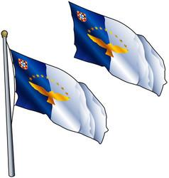 Waving azores flag vector