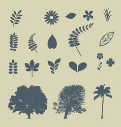Leaves and Trees vector image vector image