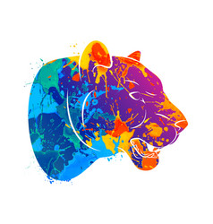 abstract predatory cat leopard vector image