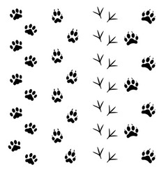 black animal tracks set vector image vector image