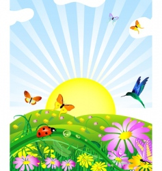 floral lawn vector image vector image