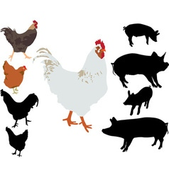 Rooster chiken pigs silhouettes vs vector image vector image