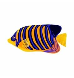 Zebrasoma fish icon cartoon style vector image vector image
