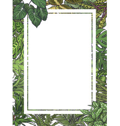 Exotic tropical leaves frame vector