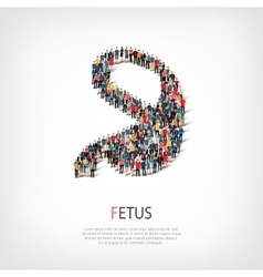 fetus people 3d vector image
