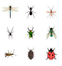 set of bug realistic symbols with pismire vector image