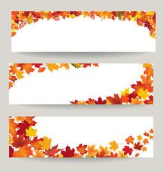 fall leaves banner set swirl autumn leaf vector image vector image