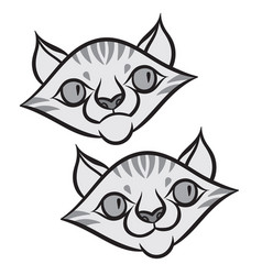 cartoon smiling tabby cat vector image vector image
