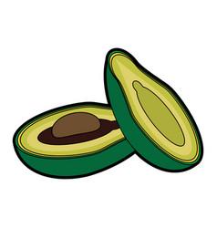 Avocado vegetable icon image vector