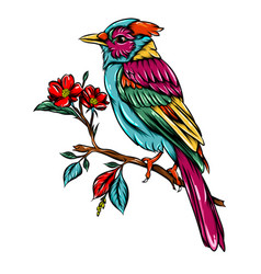 blur jay bird entangle with good colour vector image