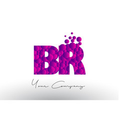 br b r dots letter logo with purple bubbles vector image