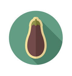 Eggplant flat icon vegetable vector