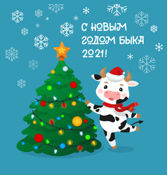 happy new year cartoon cows character russian vector image