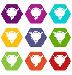human bladder icons set 9 vector image