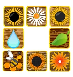 nature and eco creative symbols set vector image
