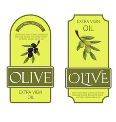 olive oil labels green organic vector image