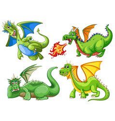 set of green dragon vector image