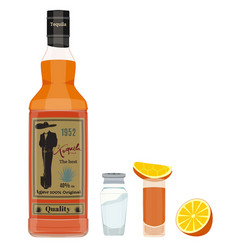 Tequila set flat style design vector