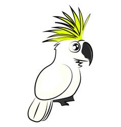 White cockatoo bird on white background vector