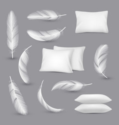 white pillows wind feathers for bedroom rectangle vector image