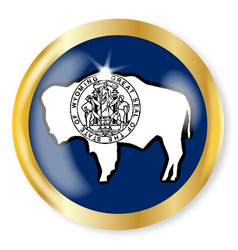 Wyoming flag button vector