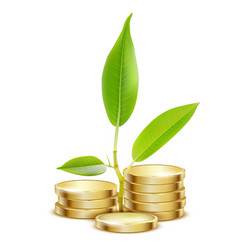 young green sprout from pile of gold coins vector image