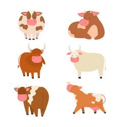 bulls cows farm animal character vector image