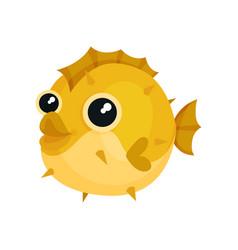 adorable yellow blowfish with big shiny eyes vector image