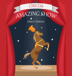 Circus trained horse in stage decoration vector