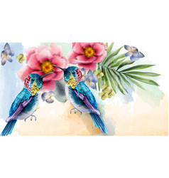 colorful humming birds and flowers watercolor vector image