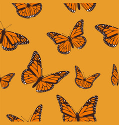 Orange butterfly monarch on a light orange vector