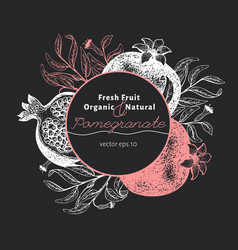 Pomegranate fruit design template hand drawn vector