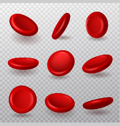 Red blood cells realistic 3d erythrocytes vector