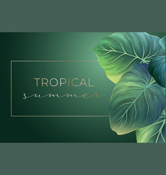 summer banner with green palm leaves vector image