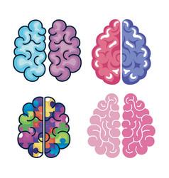 Creative four brains vector