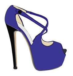 Fine fashion shoes vector