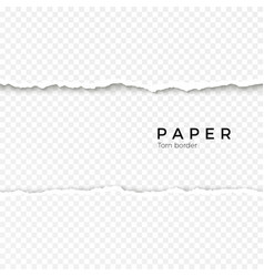 Horizontal seamless torn paper edge rough broken vector