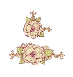 Beautiful hand drawn vintage style floral design vector