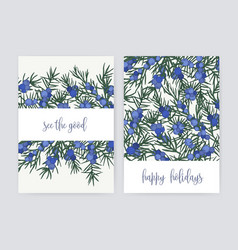 bundle of postcard templates with juniper berries vector image